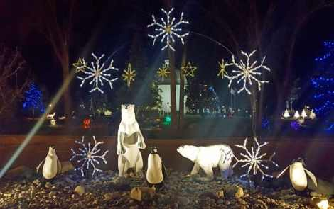 Experiencing Christmas In the Frankenmuth Outdoors