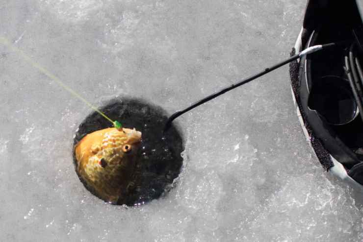 A properly sized ice fishing hole. Photo courtesy of Amanda and Jeff Elliot