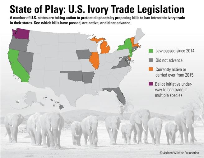 State of Play US Ivory Trade Legislation  African Wildlife Foundation