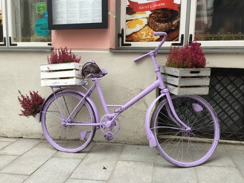 Purple bike in Tallinn, Estonia