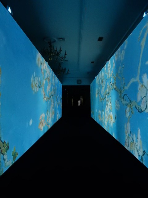 Van Gogh Alive exhibition in Wroclaw, Poland