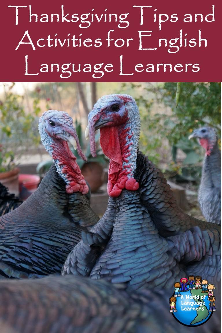 thanksgiving tips for ELLs