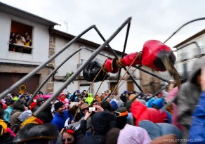 Massive ant descending to Laza's main square, Ourense