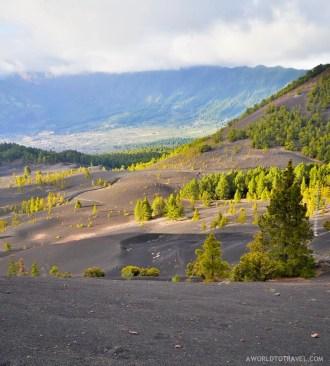 La Palma - Canary Islands- A World to Travel-64