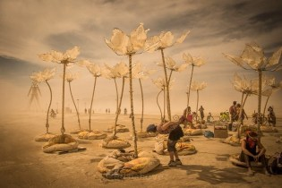 Burning Man by Edin Chavez - The Coolest Music Festivals Around The World - A World to Travel-2