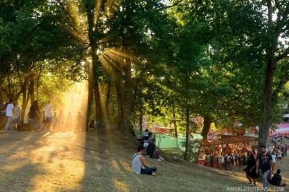 Vodafone Paredes de Coura 2015 music festival - A World to Travel-40