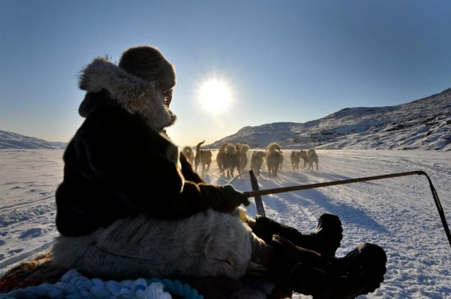 Greenland Dog Sledding 1 - Discover the World of Greenland Top 6 Arctic Attractions - A World to Travel