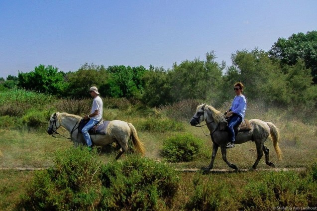 Horse riding Camague - Interview with Stefania van Lieshout - A World to Travel