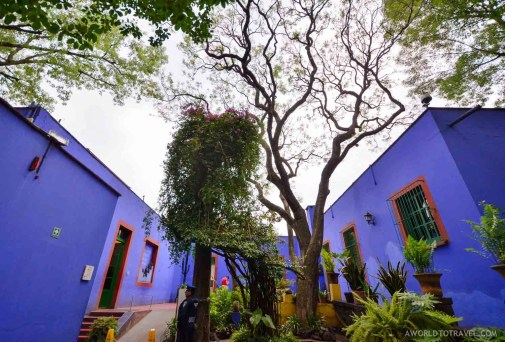 Things to do in Mexico City - A World to Travel-255