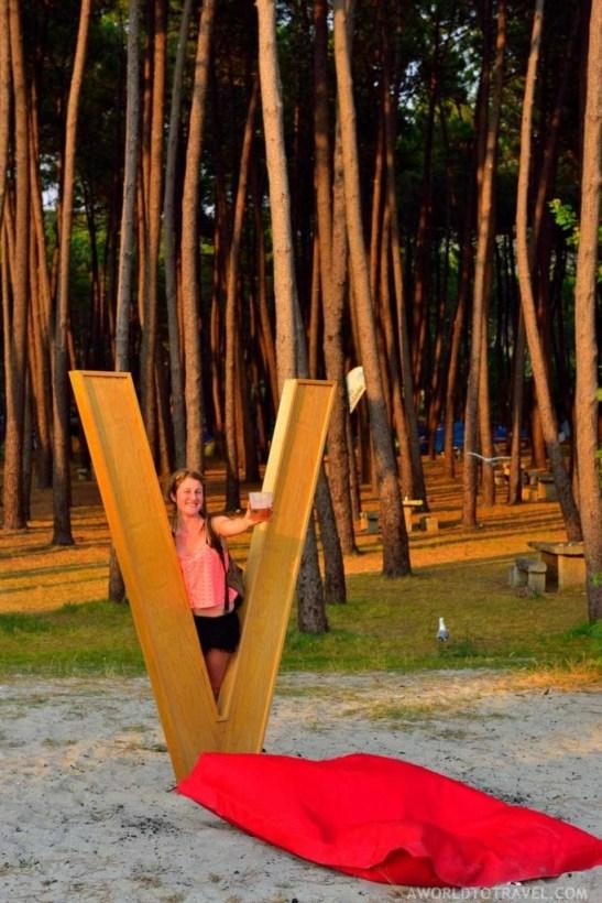 Festival V de Valares 2016 - A World to Travel-3