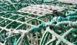 Porto das Barcas - Rota do Peixe Alentejo Portugal - A World to Travel (6)