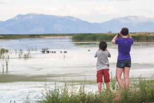 Bear River Bird Refuge - Romantic Places to Visit in Box Elder County - A World to Travel