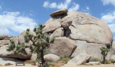 Coachella Valley - Highlights Of A South West Road Trip - A World to Travel