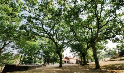 Carballeira de San Xusto - San Xurxo Cotobade - Terras de Pontevedra - A World to Travel (1)