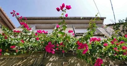 Horreos de Combarro - Poio - Terras de Pontevedra - A World to Travel (6)