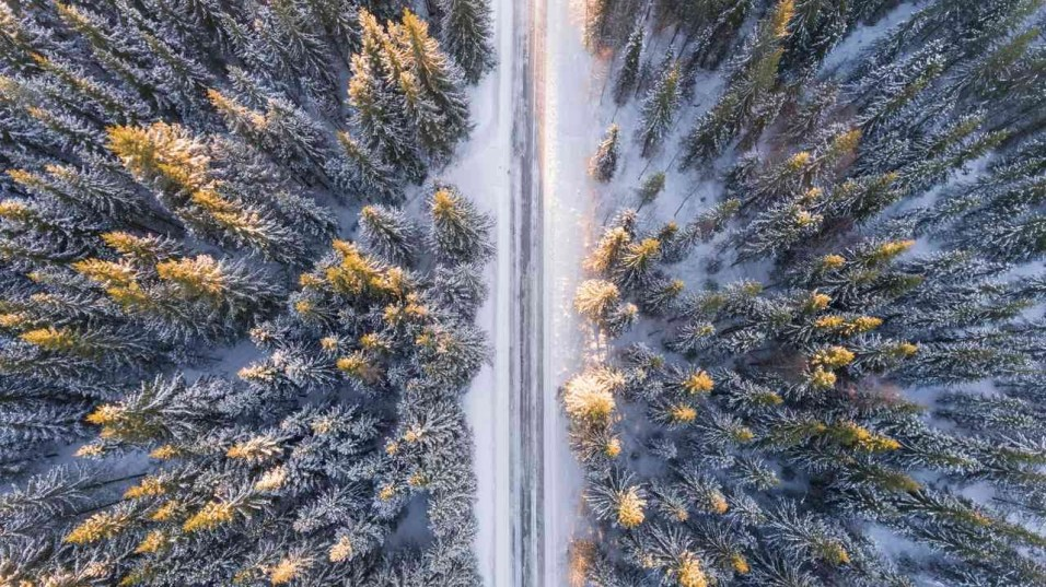 Snowy forest drone shot - Tips for Creating Amazing Travel Videos - A World to Travel