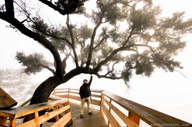 Passadiços do Paiva - Arouca - Montanhas Magicas Road Trip - Portugal - A World to Travel (3)