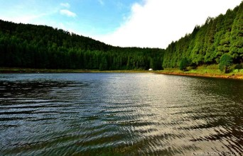 Lagoa Empadadas - Best Photography Locations in Sao Miguel - Azores Road Trip - A World to Travel (22)