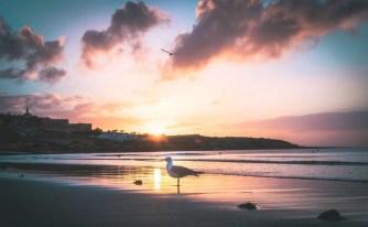 One Week Fuerteventura Surf Camp Adventure - A World to Travel (5)