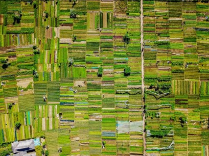 green patterns - Best places to visit in Vietnam - A World to Travel