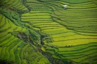 Khau Phạ Pass - Best places to visit in Vietnam - A World to Travel