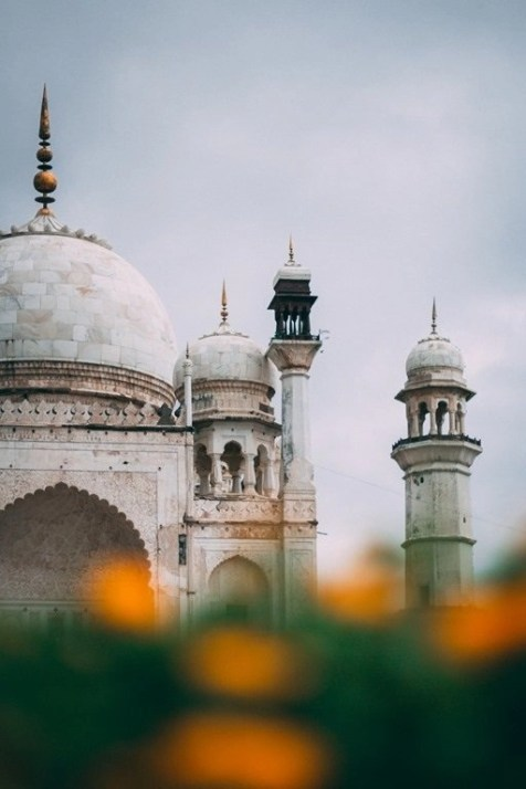 Taj Mahal flowers - India Landmarks And Famous Monuments Revealing Its Rich Architectural Heritage - A World to Travel