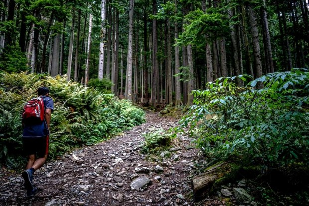 Grouse Mountain (1) - Best Day Hikes Around Vancouver - A World to Travel