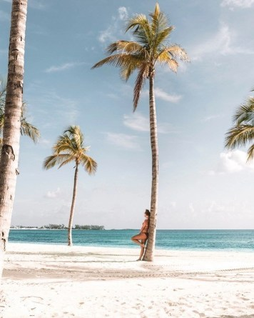 Palm trees and sand - Most Romantic Beaches In The Bahamas - A World to Travel