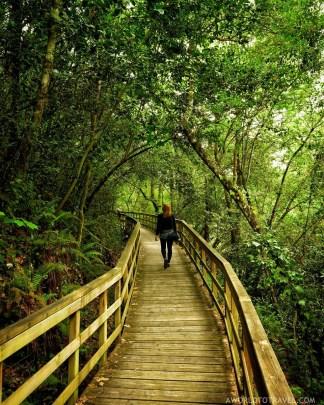 Pasarelas rio Mao - Ribeira Sacra - A World to Travel