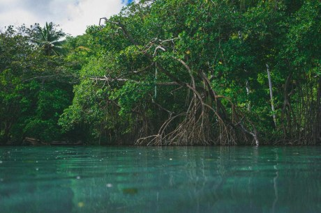 Ricon - Best Beaches In Dominican Republic Road Trip - A World to Travel
