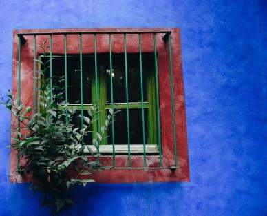 Mexican garden - Inspiring Ideas For Lovely Travel-Themed Gardens - A World to Travel (5)