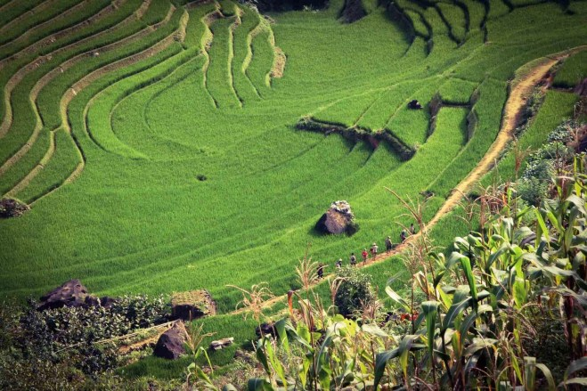 Sa Pa (1) - Hiking in Vietnam - A World to Travel