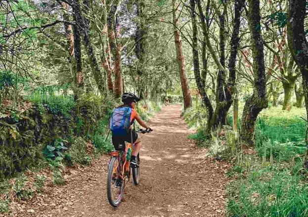 Etapa 6 - Melide Santiago de Compostela - El camino en bici con Tee Travel - A World to Travel (9)