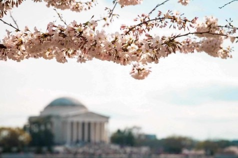 Jefferson Memorial - Planning a trip to Washington DC - A World to Travel