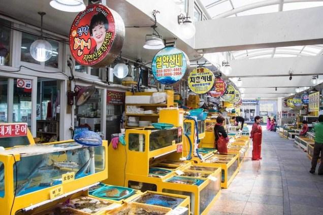 Sokcho Seafood Market - South Korea tourist destinations - A World to Travel