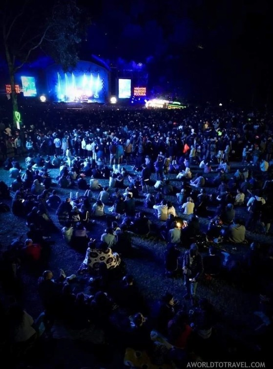 New Order (11) - Vodafone Paredes de Coura music festival 2019 - A World to Travel