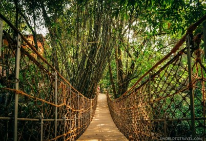 What Makes Kerala Special - Human by Nature - A World to Travel-87
