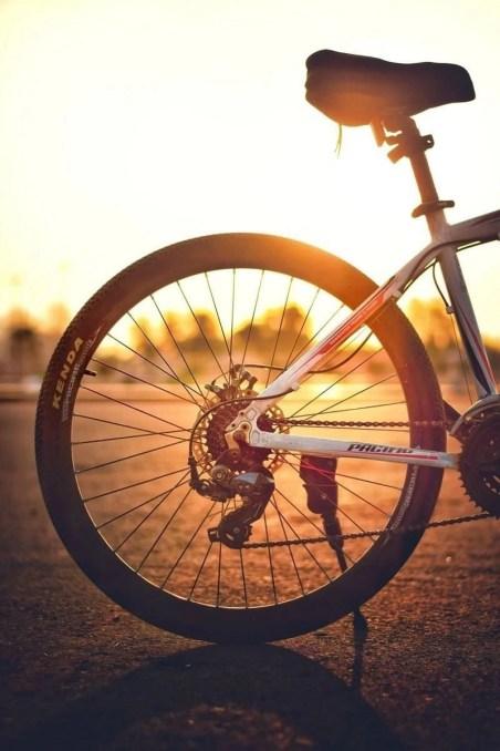 Bike behind wheel at sunset