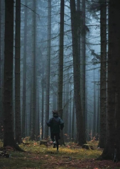 Boy running in a forest. Vrchlabí, Czechia