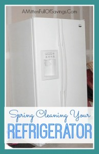 Spring Cleaning Your Fridge