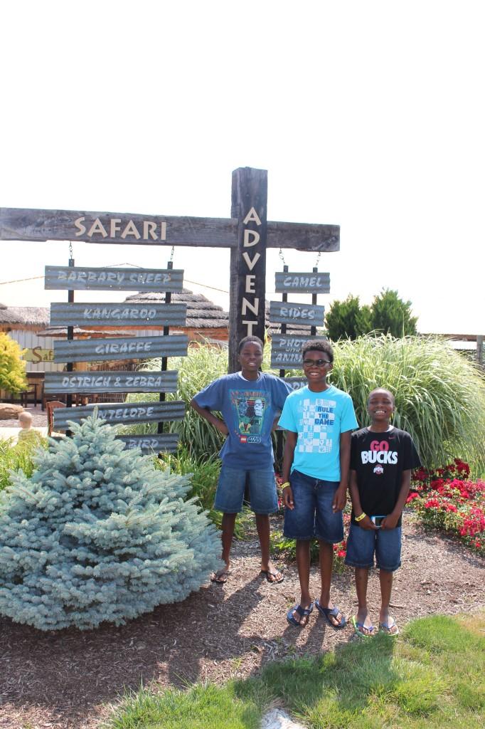 boys at the adventure park