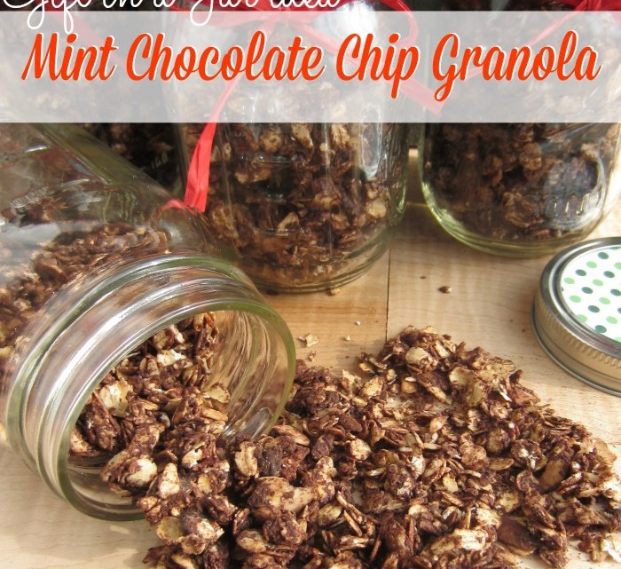 Gift In a Jar Idea: Homemade Mint Chocolate Chip Granola  Gift In a Jar I...