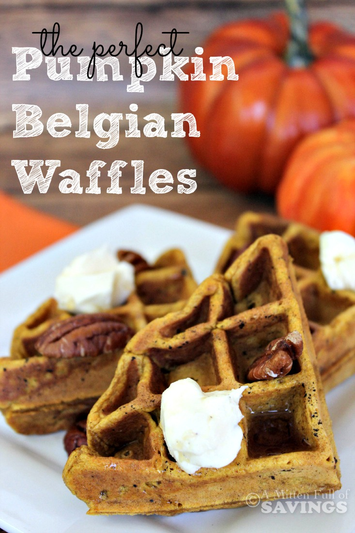 pumpkin recipes, waffle recipes, easy breakfast recipes, easy waffle recipes, easy pumpkin recipes
