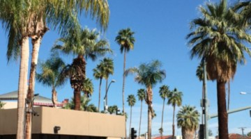 Find out fun things you can do in Palm Springs when you're short on time- Drive-by Vacay in Palm Springs #CAMomsEscape