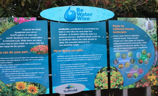 Information at Sea World