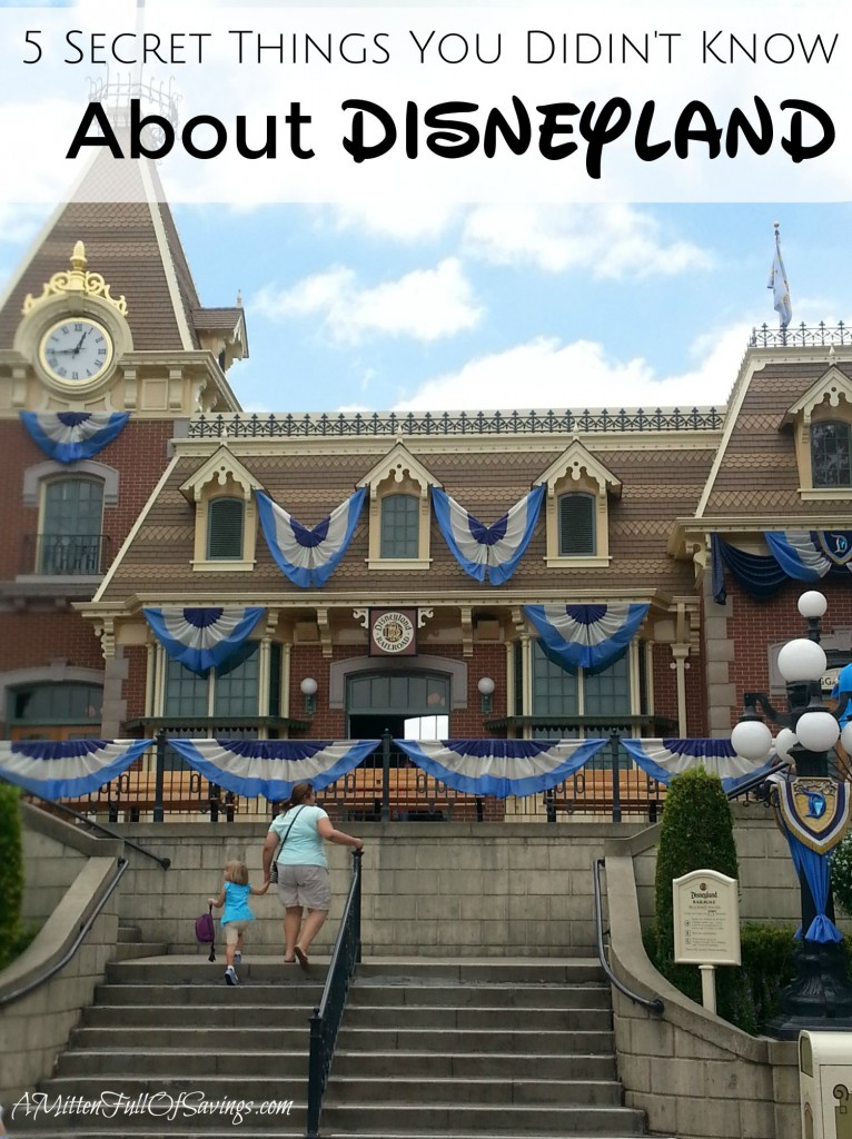 5 Secret Things You Didnt Know About Disneyland
