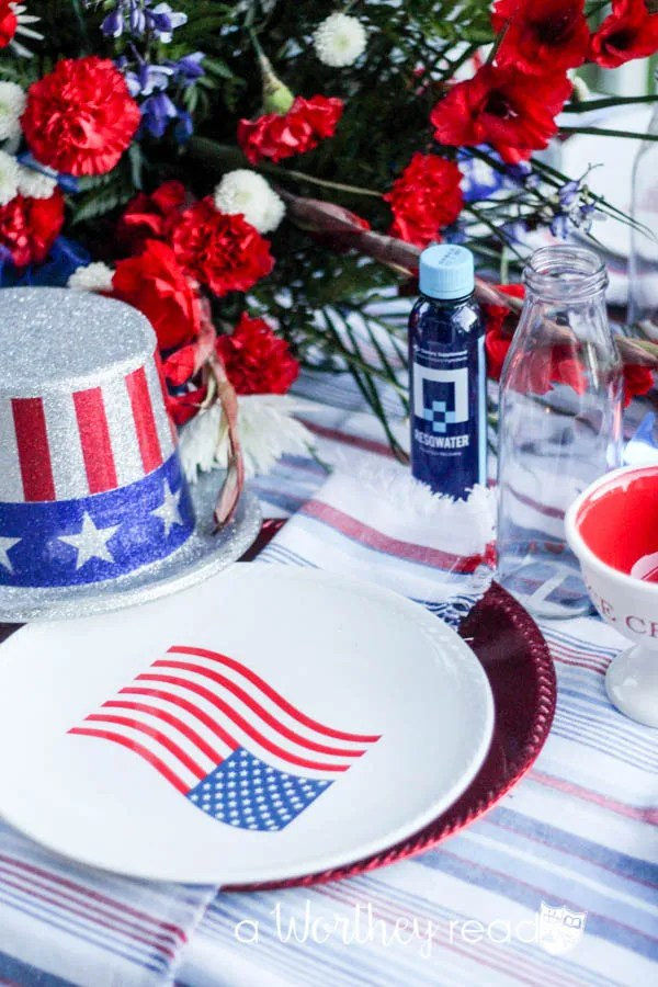 Red, White & Blue Outdoor Party Theme-23