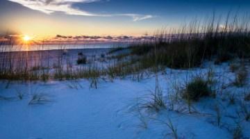 8 Adventurous Reasons To Visit Gulf County Florida