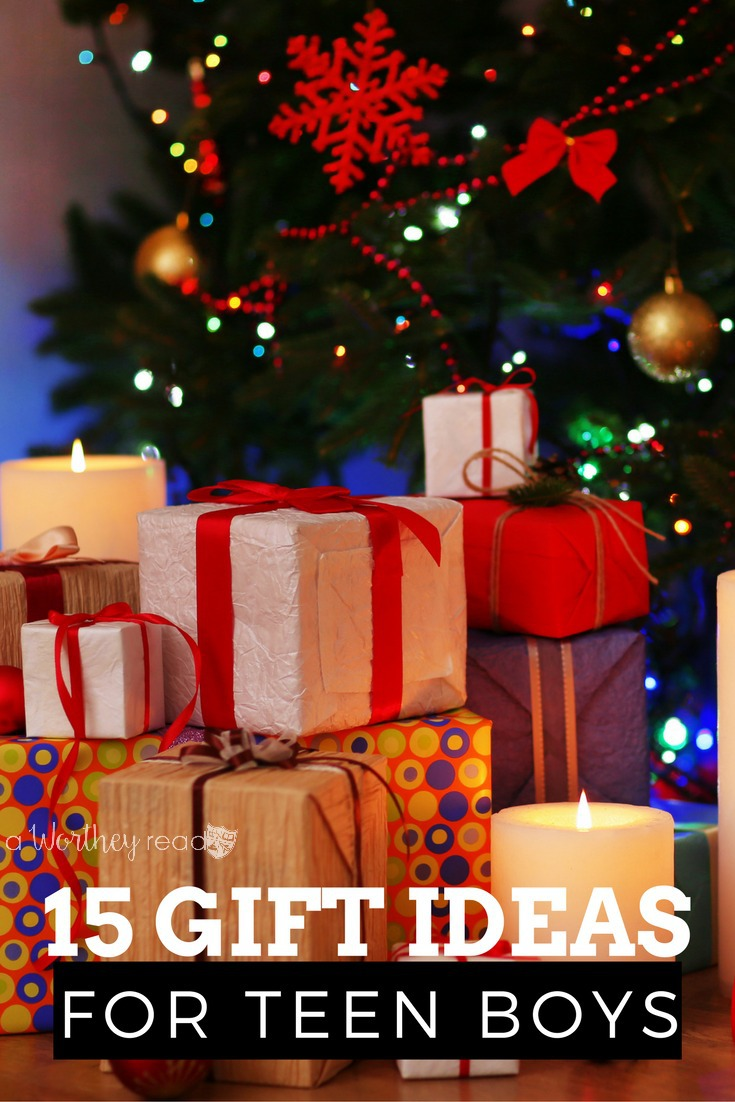 15+ Christmas Gift Ideas for Teen Boys - This Worthey Life - Food ...