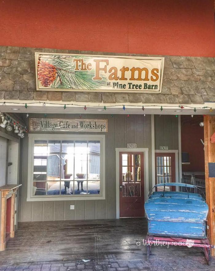 Best Attraction in Northeast Ohio- Pine Tree Barn